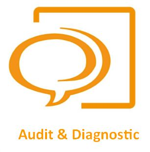 Audit & Diagnostic